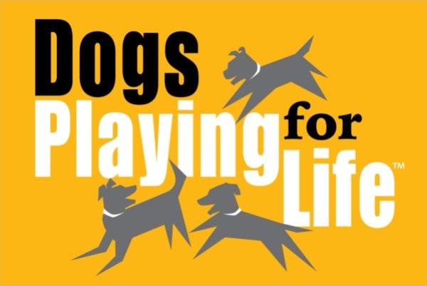 dogsplayingforlife